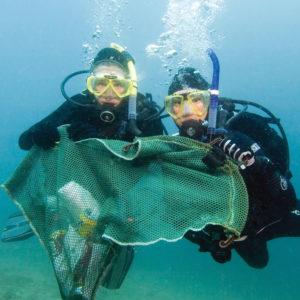 Dive Against Debris Kurs